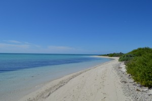 Empty Beach: Dry Tortugas National Park